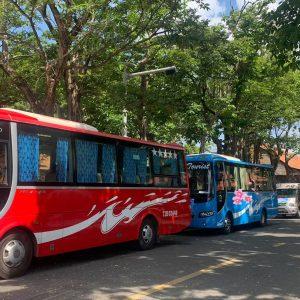 xe-29-cho-tai-con-dao